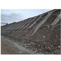 生態恢復 土壤重金屬修復改良劑 廠家銷售 現貨供應