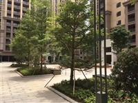 东莞小产权房网 长安中心花园 8800起价 可分期 精装现房