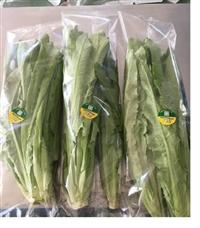 供應全自動凈菜包裝機 凈菜套袋包裝機 超市凈菜保鮮包裝機
