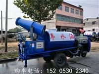 安徽多功能雾炮洒水车4吨价格-定做