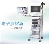 上海无痛电子肠镜、下消化道内窥镜厂家