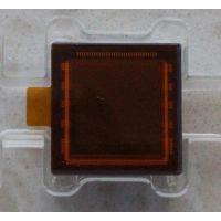CMV4000-3E12M1PP,CMV4000-3E12M1LP,CMV4000-3E12M1CA,CMOS傳感