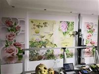 墙体彩绘入门   3D效果墙体打印机