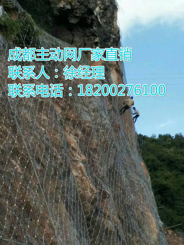 南京主动防护网厂家
