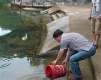 专业供应放生鱼商家电话