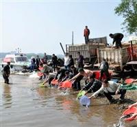建忠水產專業供應放生魚