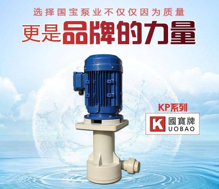 立式离心排污泵 江苏国宝耐腐蚀立式泵 厂家生产直销