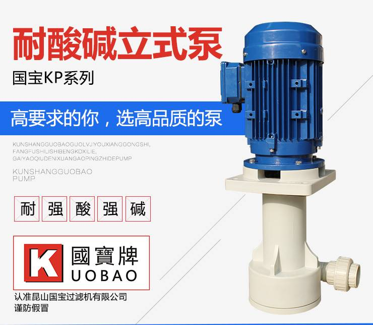 反冲洗泵 国宝可空转立式泵 厂家生产直销