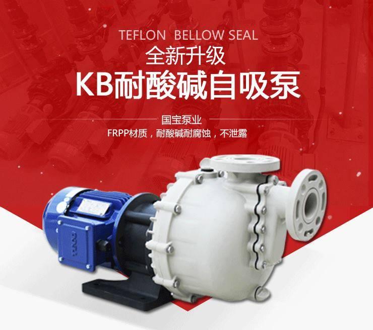耐腐蚀自吸离心泵 国宝自吸式水泵 污水处理都用的泵