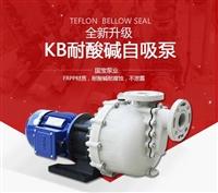 广东自吸泵批发 国宝耐腐蚀自吸泵 产品可靠性能稳定