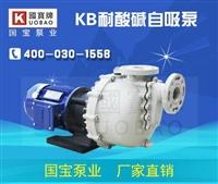 220V自吸泵价格哪家实惠 耐腐蚀自吸泵厂家款式多样