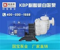自吸泵哪个牌子好 昆山国宝PP自吸泵厂家直销 让你用了还想用