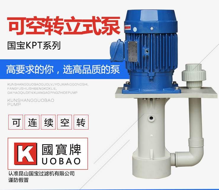 液下泵型号 国宝泵业塑料耐酸碱立式泵 经济实惠