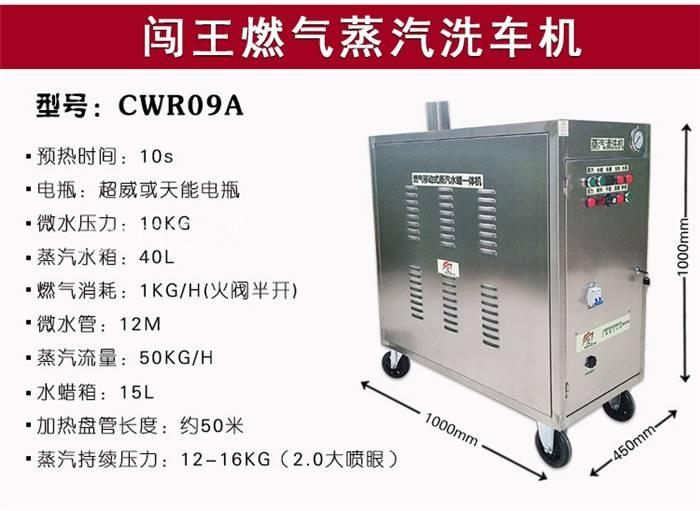 天津闯王蒸汽洗车机生产制造 高压蒸汽清洗机 蒸汽洗车机加盟