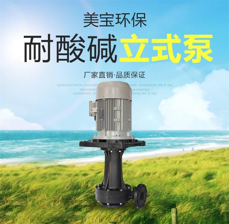 美宝防腐蚀立式泵 苏州耐酸碱可空转立式泵  现货供应