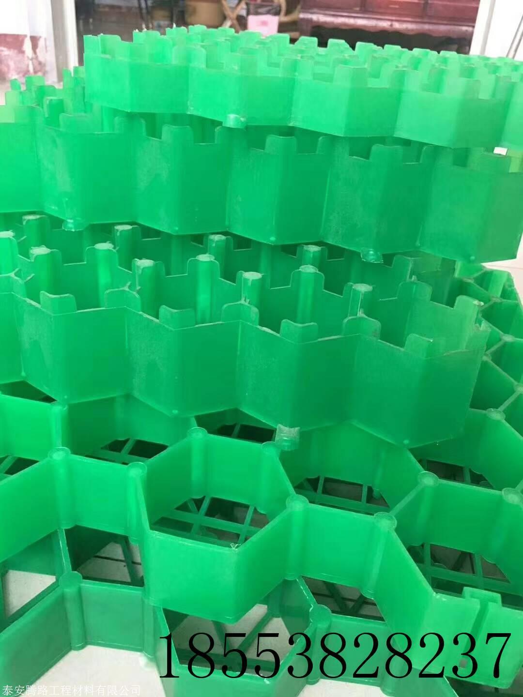 停车场绿化专用植草格
