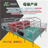 優質養豬設備歐式雙體母豬產床