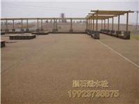萬州 透水混凝土 學校跑道彩色地坪 彩色透水混凝土 彩色混凝土