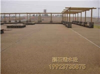 內江 透水混凝土 透水砼 彩色跑道地坪 生態透水地坪 藝術地坪