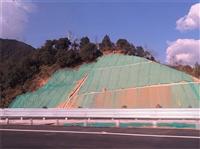 邊坡支護綠化材料 黔西南廠家大量定做發貨