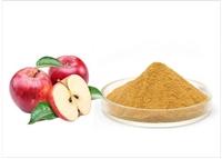 苹果提取物苹果果粉