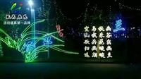 灯光展安装厂家景区亮化