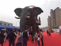 历史悠久机械大象出租