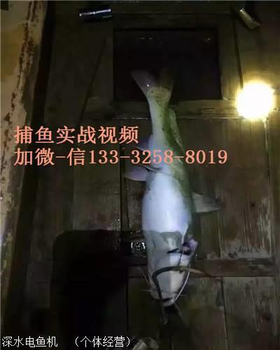 男性生值器活人改i)�f_电鱼船机 深水电鱼l机逆变器