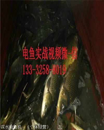 男性生值器活人改i)�f_电子脉冲电鱼i机 发电机后级捕鱼器