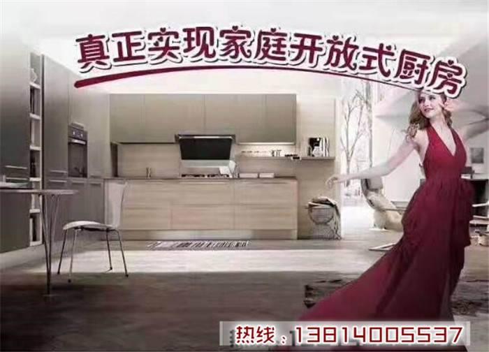 呼伦贝尔大卫杨油烟净化油烟机推荐品牌