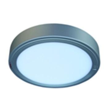 海洋王 NFC9188-III  LED吸顶灯