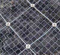 鄂州SPIDER高強度螺旋網價格 主動網