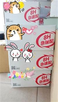 供应福州到台湾化妆品,海空运输专线