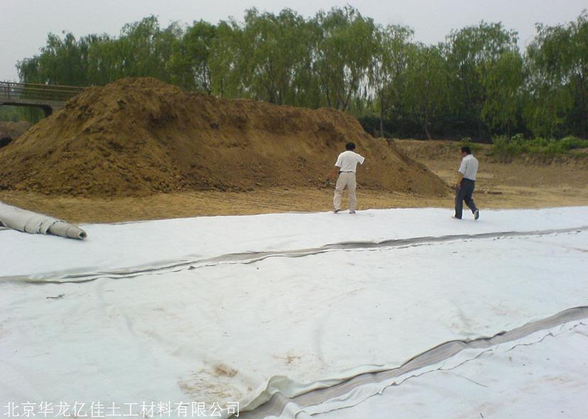 HDPE防渗复合土工膜厂家