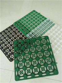 阔展加强型蓄排水板 蓄排水板厂家批发 质优价廉