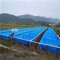 一年四季水产养殖牛蛙池 养虾帆布水池 养鱼篷?#21152;?#27744;