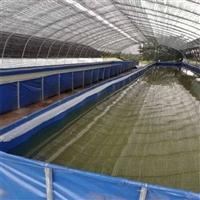 定做供应农业新工业大型养殖虾水池 养鲈鱼池专业