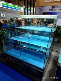 廣州海鮮池免費設計定做 亞克力魚缸訂做  洋清水族廠家
