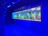 廣州海鮮池 海鮮池設計 海鮮池制作 超市魚池水族