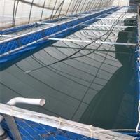 養蝦帆布水池 新時代變革養殖水池帆布水池 養魚帆布水池