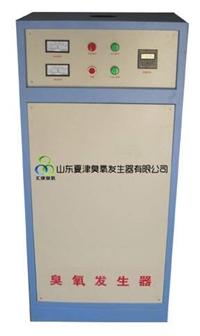 脫色臭氧發生器-云南污水處理臭氧機