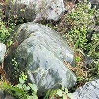 富贵绿石头、庭?#27827;?#27744;围边、假山石、溪流?#34507;丁?#23500;贵绿