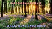 黃花槐種子-湖北噴播綠化黃花槐種子質優價廉