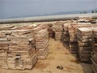临沧钢模板加工定做  临沧钢模板批发市场