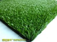 吐鲁番围挡塑胶人工草坪价格多少钱