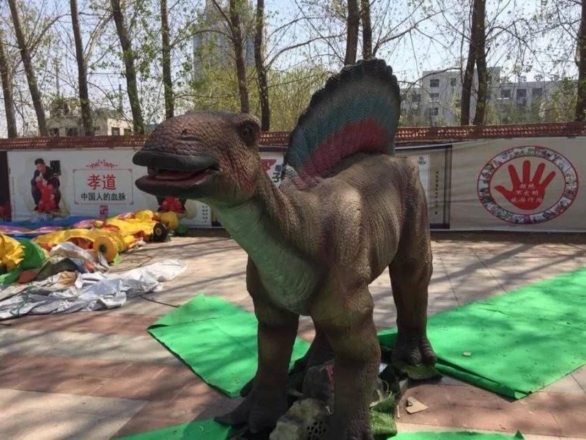 骄傲自满恐龙出租