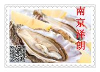 牡蛎提取物厂家现货南京泽朗生产