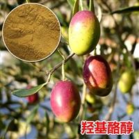 专注提纯12年橄榄叶提取物羟基酪醇 5 10厂家价格