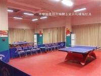 乒乓球场地灯具