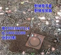 日本野猪弹簧套制作视频临汾-奉节县野猪套带警报